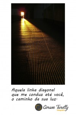 linhas3